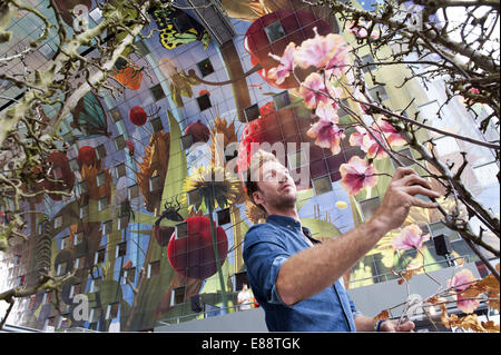 Sept. 30, 2014 - Rotterdam, South Holland, The Netherlands, Holland - A florist...Indoor or covered food market - Stock Photo