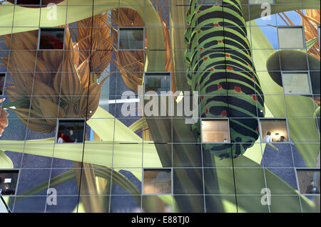 Sept. 30, 2014 - Rotterdam, South Holland, The Netherlands, Holland - Future residents are in their apartments and - Stock Photo