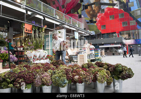 Sept. 30, 2014 - Rotterdam, South Holland, The Netherlands, Holland - A florist in the Markthal in the city Rotterdam...Indoor - Stock Photo