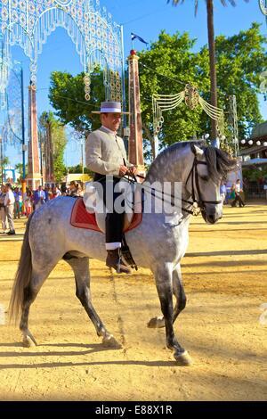 Spanish horse rider in traditional dress at annual Horse Fair, Jerez de la Frontera, Cadiz Province, Andalusia, - Stock Photo