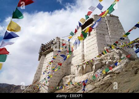 Namgyal Tsemo Gompa, Leh, Ladakh, India, Asia Stock Photo