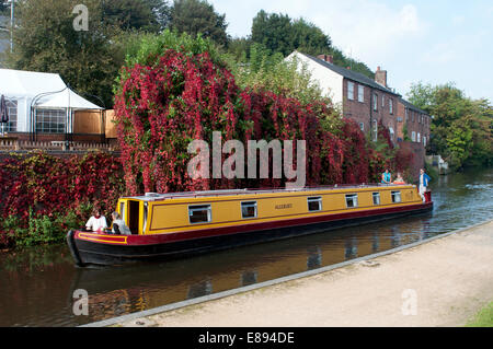 Narrowboat on the Staffordshire and Worcestershire Canal in autumn, Kidderminster, Worcestershire, UK - Stock Photo