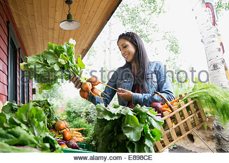 Woman shopping for fresh produce outside market - Stock Photo