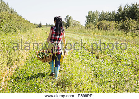 Woman carrying basket in field - Stock Photo