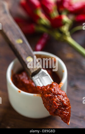 Harissa, tunisian hot red sauce or paste made from chili peppers - Stock Photo