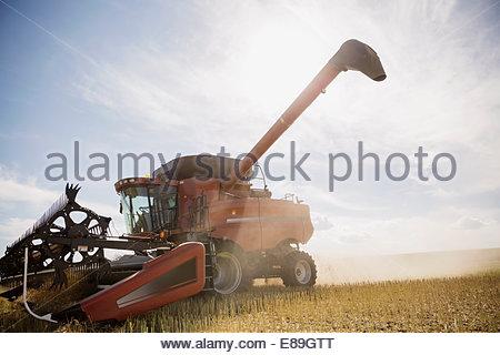 Combine harvester working in sunny crop field - Stock Photo