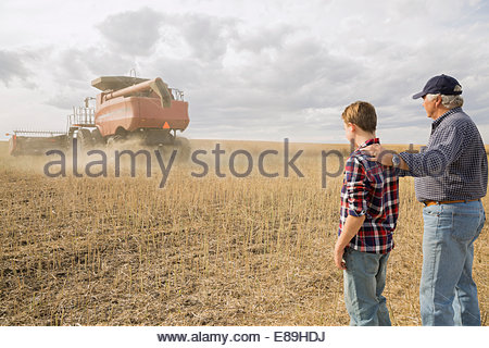 Grandfather and grandson watching combine harvester in field - Stock Photo