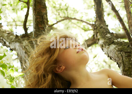 Girl climbing tree - Stock Photo