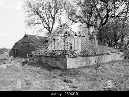 Achtziger Jahre, Landwirtschaft, Moorkolonisation, verfallenes Fehnhaus in Hesel-Schwerinsdorf, Geestruecken, Ostfriesland, - Stock Photo