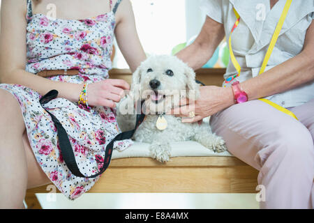 Grandmother and grandchild sitting on bench with dog - Stock Photo