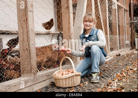 Girl feeding chickens on organic farm - Stock Photo