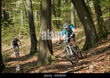 Young men mountainbiking in forest, Bavaria, Germany - Stock Photo