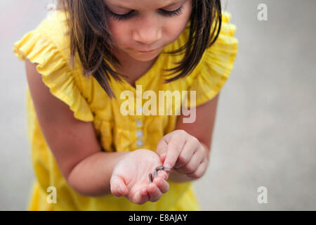 Girl holding and looking down at worm - Stock Photo