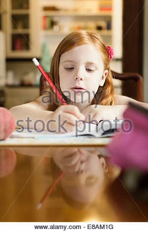 Girl doing school homework at dining room table - Stock Photo