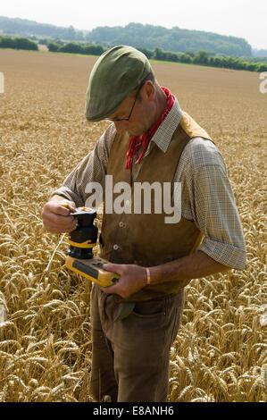 Farmer testing in field of wheat - Stock Photo