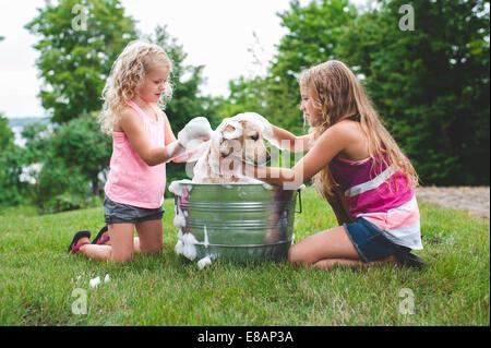 Two sisters bathing pet Labrador Retriever puppy - Stock Photo