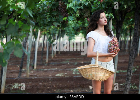 Young woman standing among vines, holding grapes - Stock Photo