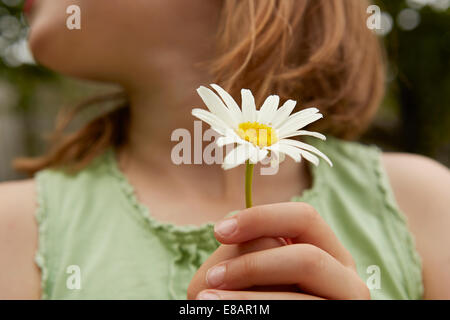 Cropped image of girl holding daisy flower - Stock Photo