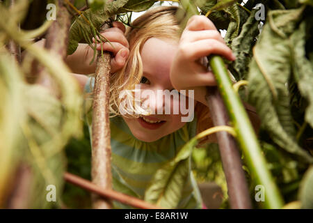 Close up portrait of girl hiding in bushes - Stock Photo