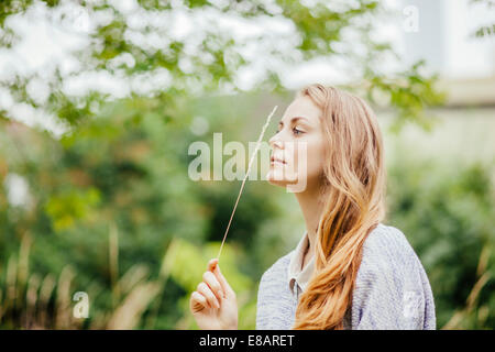 Young woman in field holding up a stem of long grass - Stock Photo