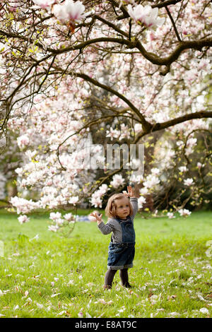 Young girl standing under tree in blossom - Stock Photo