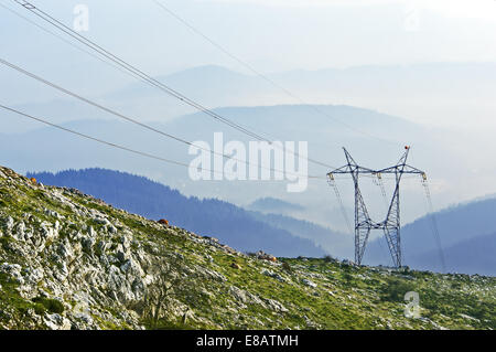 electric pole in natural environment - Stock Photo
