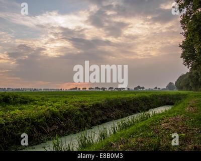 Stream running through dutch meadow by sunset - Stock Photo