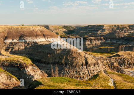 Elk203-6615 Canada, Alberta, Drumheller, Alberta Badlands - Stock Photo