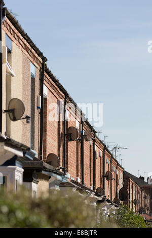 TV satellite dishes on row of terraced houses - sunlit, trees in foreground - Stock Photo
