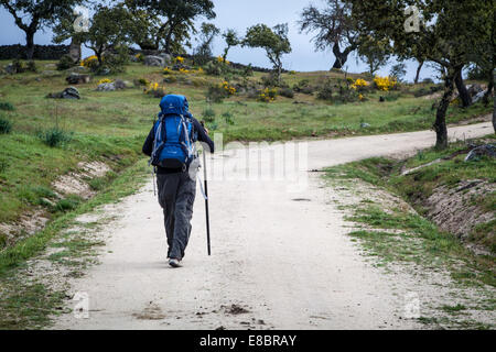 Walking the Camino to Santiago de Compostela, Spain on the Via la Plata or Silver Route - Stock Photo