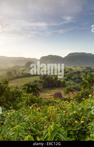 mogotes  in the evening landscape of Vinales, Pinar del Rio province, Cuba - Stock Photo
