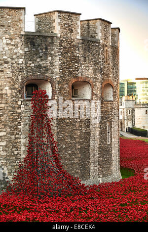 Tower of London Poppies in the Moat HRP-Tower London -WW1-LogoFrom 5 August 2014 to 11 November 2015 - Stock Photo
