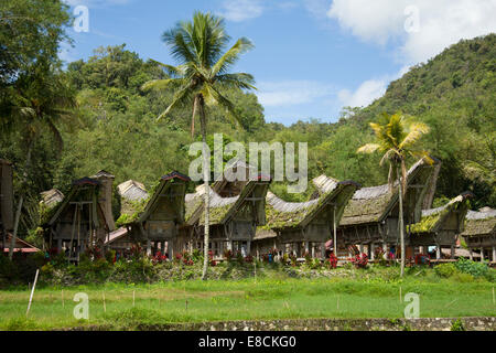 Traditional Torajan ancestral houses or Tongkonan in Sulawesi - Stock Photo