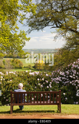 View from the Mausoleum, Bowood rhododendron spring garden, Derry Hill, Calne, Wiltshire - Stock Photo