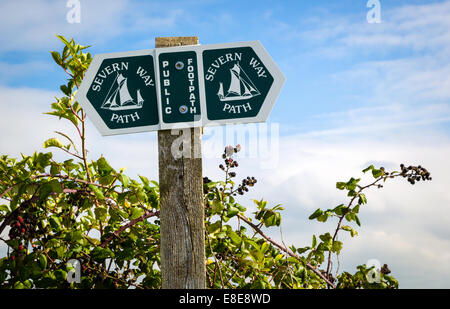 Severn Valley Way marker post and arrows on the national trail along the River Severn UK - Stock Photo