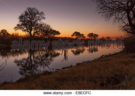 Savuti Channel flowing through the Chobe National park, Botswana. Scene here captured at sunset. - Stock Photo