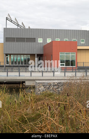 Environmental Education and Ethics Centre with water treatment wetland including Cattails (Typha latifolia) in Ralph - Stock Photo