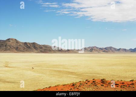 Desert and mountain landscape, Namib-Naukluft National park, Namibia - Stock Photo