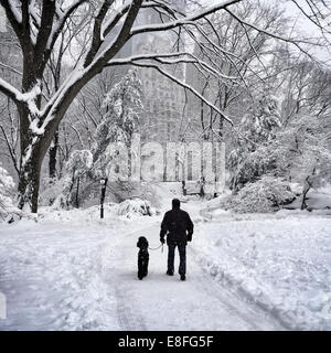 USA, New York, New York City, Man and his dog walking in Central Park in winter - Stock Photo