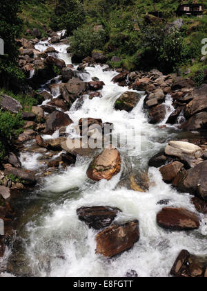 River flowing over rocks - Stock Photo
