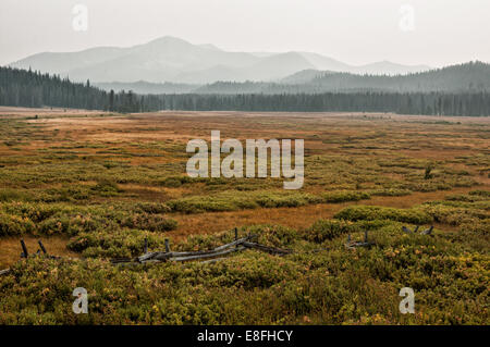 USA, Idaho, Custer County, Stanley, Smokey Mountains in foggy day - Stock Photo