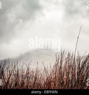 UK, Scotland, Inner Hebrides, Jura,  Mist in mountains - Stock Photo