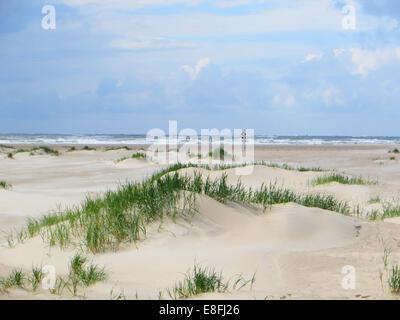 Sand dunes on beach, Denmark - Stock Photo
