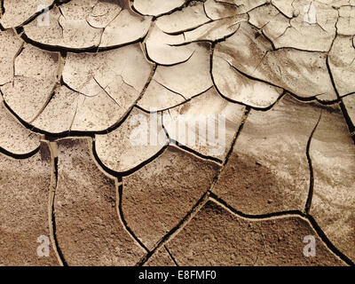 USA, Nevada, Cracked earth, Dried out land in drought - Stock Photo