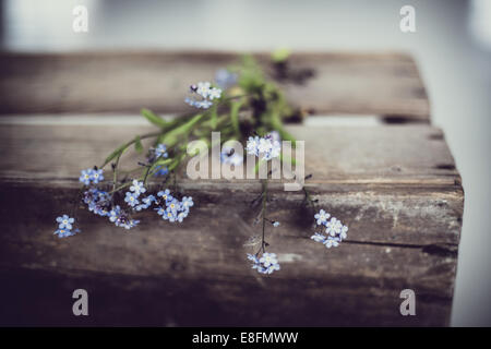 Forget-me-not flowers on old wooden box - Stock Photo
