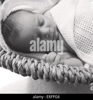 Baby girl sleeping in moses basket - Stock Photo
