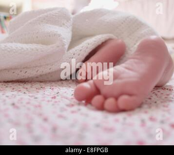 Close-up of baby girl's feet - Stock Photo