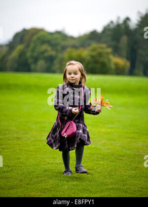 Girl (2-3) holding autumn leaves standing in meadow - Stock Photo