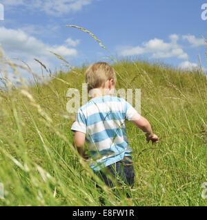 Rear view of boy running through wheat field - Stock Photo