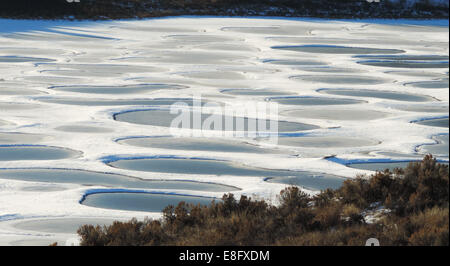 Canada, British Columbia, Osoyoos, Spotted Lake - Stock Photo